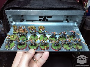 Blood Bowl Team